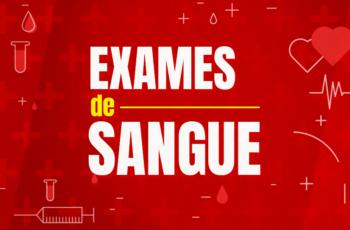 MEUS EXAMES DE SANGUE (HORA DA VERDADE!)