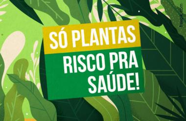 O GRAVE RISCO NUTRICIONAL DO VEGANISMO (COMER SÓ PLANTAS)