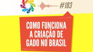 Tribo Forte 183