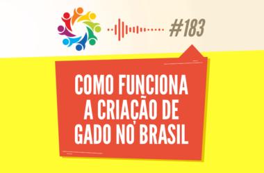 TRIBO FORTE #183 – COMO FUNCIONA A CRIAÇÃO DE GADO NO BRASIL (COM A ZOOTECNISTA ANNA FLAVIA)