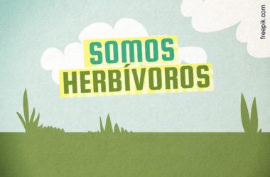 [ALERTA DE BALELA] NÓS SOMOS HERBÍVOROS!?