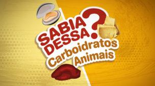 carboidratos de origem animal