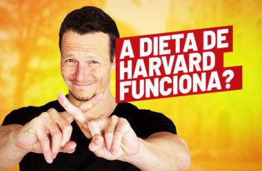 "A DIETA ""SAUDAVEL"" DE HARVARD | VAI ENCARAR?"