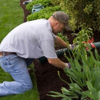 jardineiro