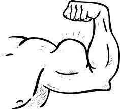 As bases de como ganhar massa muscular + Vídeo