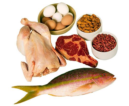 Mais Proteína? Menos Proteína? 3 Mitos Refutados.